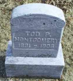 MONTGOMERY, TOD P. - Ross County, Ohio | TOD P. MONTGOMERY - Ohio Gravestone Photos