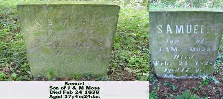 MOSS, SAMUEL - Ross County, Ohio | SAMUEL MOSS - Ohio Gravestone Photos