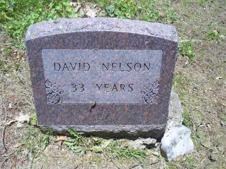 NELSON, DAVID - Ross County, Ohio | DAVID NELSON - Ohio Gravestone Photos