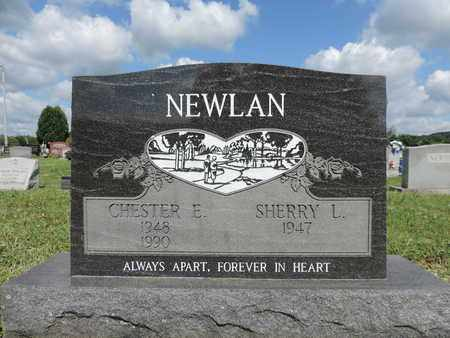 NEWLAN, CHESTER E. - Ross County, Ohio | CHESTER E. NEWLAN - Ohio Gravestone Photos