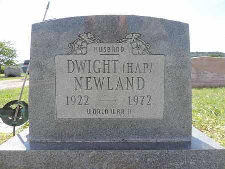 NEWLAND, DWIGHT - Ross County, Ohio | DWIGHT NEWLAND - Ohio Gravestone Photos