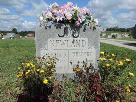 NEWLAND, DELBERT - Ross County, Ohio | DELBERT NEWLAND - Ohio Gravestone Photos