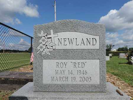 NEWLAND, ROY - Ross County, Ohio | ROY NEWLAND - Ohio Gravestone Photos