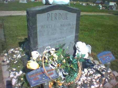PERDUE, NATHAN JAMES - Ross County, Ohio | NATHAN JAMES PERDUE - Ohio Gravestone Photos