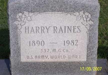 RAINES, HARRY - Ross County, Ohio | HARRY RAINES - Ohio Gravestone Photos