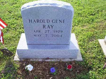 RAY, HAROLD GENE - Ross County, Ohio | HAROLD GENE RAY - Ohio Gravestone Photos