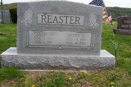 REASTER, GOLDIE - Ross County, Ohio | GOLDIE REASTER - Ohio Gravestone Photos
