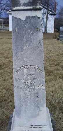 REEDY, MICHAEL - Ross County, Ohio   MICHAEL REEDY - Ohio Gravestone Photos