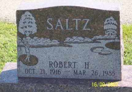 SALTZ, ROBERT H. - Ross County, Ohio | ROBERT H. SALTZ - Ohio Gravestone Photos