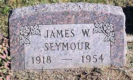SEYMOUR, JAMES W. - Ross County, Ohio | JAMES W. SEYMOUR - Ohio Gravestone Photos
