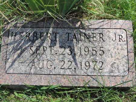TAINER, HERBERT - Ross County, Ohio | HERBERT TAINER - Ohio Gravestone Photos