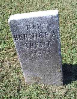 TRENT, BERNICE A. - Ross County, Ohio | BERNICE A. TRENT - Ohio Gravestone Photos