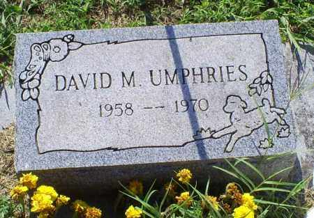 UMPHRIES, DAVID M. - Ross County, Ohio | DAVID M. UMPHRIES - Ohio Gravestone Photos