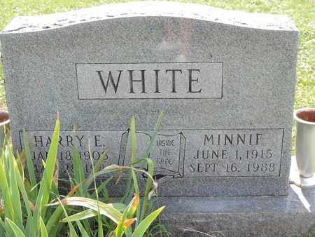 WHITE, MINNIE - Ross County, Ohio | MINNIE WHITE - Ohio Gravestone Photos
