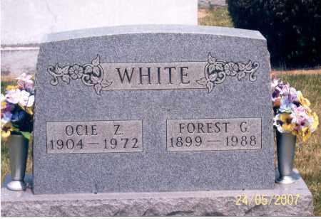 WHITE, FOREST G. - Ross County, Ohio | FOREST G. WHITE - Ohio Gravestone Photos