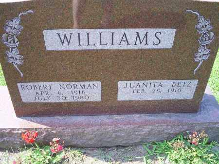 WILLIAMS, ROBERT NORMAN - Ross County, Ohio | ROBERT NORMAN WILLIAMS - Ohio Gravestone Photos