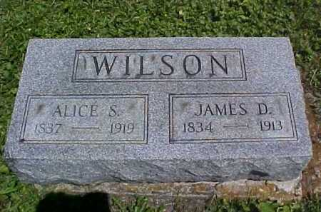 ALLEN WILSON, ALICE S. - Ross County, Ohio | ALICE S. ALLEN WILSON - Ohio Gravestone Photos
