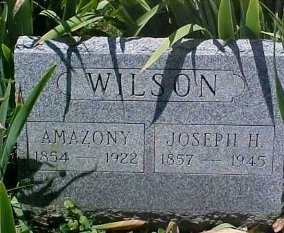LYNCH WILSON, AMAZONY - Ross County, Ohio | AMAZONY LYNCH WILSON - Ohio Gravestone Photos