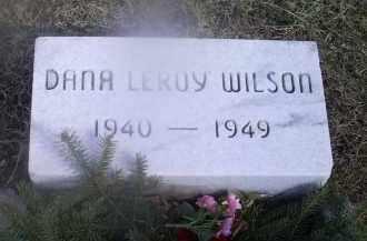 WILSON, DANA LEROY - Ross County, Ohio | DANA LEROY WILSON - Ohio Gravestone Photos