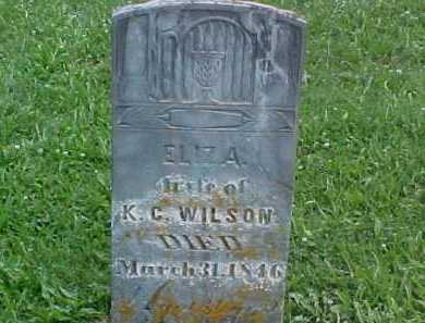 WILSON, ELIZA - Ross County, Ohio | ELIZA WILSON - Ohio Gravestone Photos