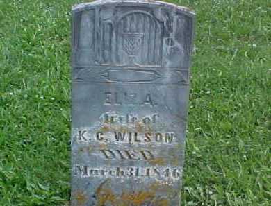 WILSON, ELIZA - Ross County, Ohio | ELIZA WILSON - Ohio Gravestone Photos