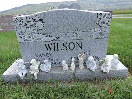 WILSON, RANDY - Ross County, Ohio | RANDY WILSON - Ohio Gravestone Photos
