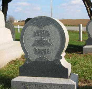 BEEBE, AARON - Sandusky County, Ohio | AARON BEEBE - Ohio Gravestone Photos