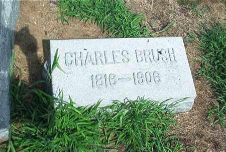 BRUSH, CHARLES - Sandusky County, Ohio   CHARLES BRUSH - Ohio Gravestone Photos