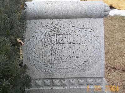 DROWN, CATHERINE L - Sandusky County, Ohio | CATHERINE L DROWN - Ohio Gravestone Photos