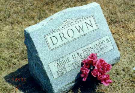 HAYDEN DROWN, ABBIE - Sandusky County, Ohio | ABBIE HAYDEN DROWN - Ohio Gravestone Photos