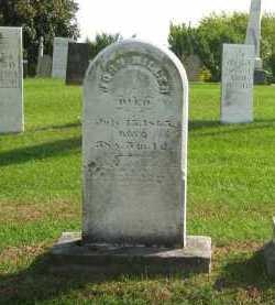 MILLER, JOHN - Sandusky County, Ohio | JOHN MILLER - Ohio Gravestone Photos
