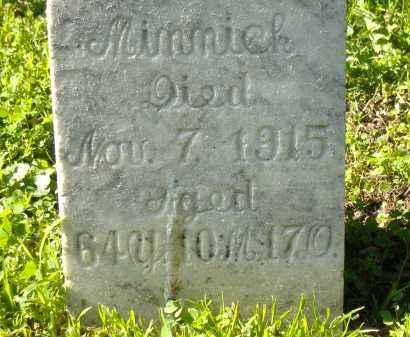 MEHLE MINNICK, CAROLINE - Sandusky County, Ohio | CAROLINE MEHLE MINNICK - Ohio Gravestone Photos