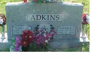 ADKINS, CARL F. - Scioto County, Ohio | CARL F. ADKINS - Ohio Gravestone Photos