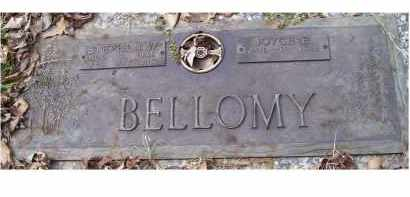 WHITE BELLOMY, JOYCE E. - Scioto County, Ohio | JOYCE E. WHITE BELLOMY - Ohio Gravestone Photos