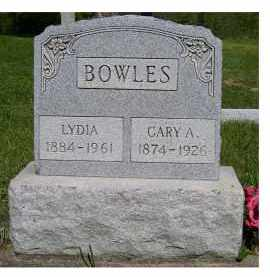 BOWLES, CARY A. - Scioto County, Ohio | CARY A. BOWLES - Ohio Gravestone Photos