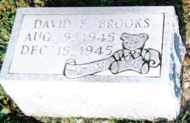 BROOKS, DAVID F. - Scioto County, Ohio | DAVID F. BROOKS - Ohio Gravestone Photos