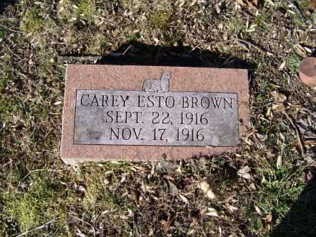 BROWN, CAREY ESTO - Scioto County, Ohio | CAREY ESTO BROWN - Ohio Gravestone Photos