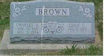 BROWN, CHARLES A. - Scioto County, Ohio | CHARLES A. BROWN - Ohio Gravestone Photos
