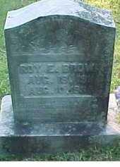 BROWN, ROY E. - Scioto County, Ohio | ROY E. BROWN - Ohio Gravestone Photos
