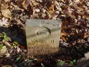 CARR, SADIE B. - Scioto County, Ohio | SADIE B. CARR - Ohio Gravestone Photos