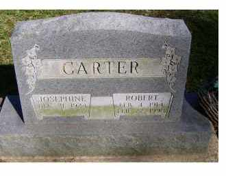 CARTER, ROBERT - Scioto County, Ohio | ROBERT CARTER - Ohio Gravestone Photos