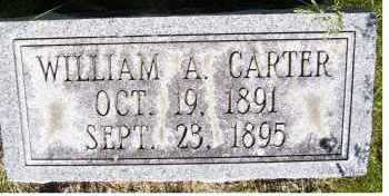 CARTER, WILLIAM A. - Scioto County, Ohio | WILLIAM A. CARTER - Ohio Gravestone Photos