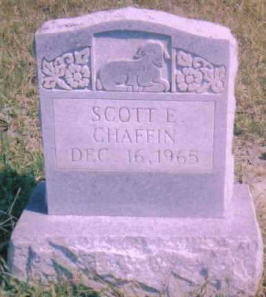 CHAFFIN, SCOTT E. - Scioto County, Ohio | SCOTT E. CHAFFIN - Ohio Gravestone Photos
