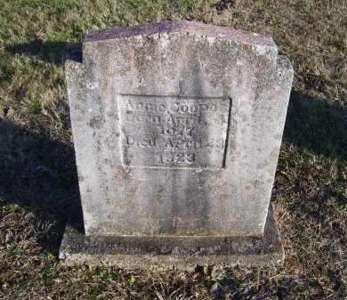 COOPER, ANNIE - Scioto County, Ohio | ANNIE COOPER - Ohio Gravestone Photos