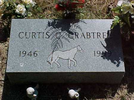 CRABTREE, CURTIS - Scioto County, Ohio | CURTIS CRABTREE - Ohio Gravestone Photos
