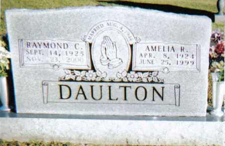 DAULTON, RAYMOND C. - Scioto County, Ohio | RAYMOND C. DAULTON - Ohio Gravestone Photos