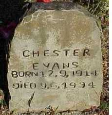 EVANS, CHESTER - Scioto County, Ohio | CHESTER EVANS - Ohio Gravestone Photos