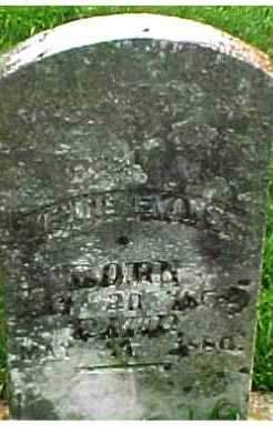 EVANS, EVELINE - Scioto County, Ohio | EVELINE EVANS - Ohio Gravestone Photos