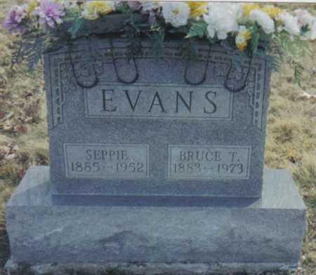 EVANS, SEPPIE - Scioto County, Ohio | SEPPIE EVANS - Ohio Gravestone Photos