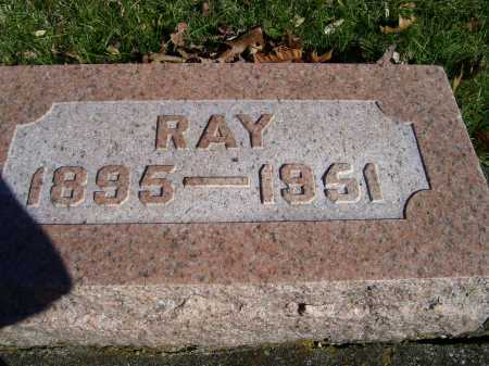 FREEMAN, RAY - Scioto County, Ohio | RAY FREEMAN - Ohio Gravestone Photos